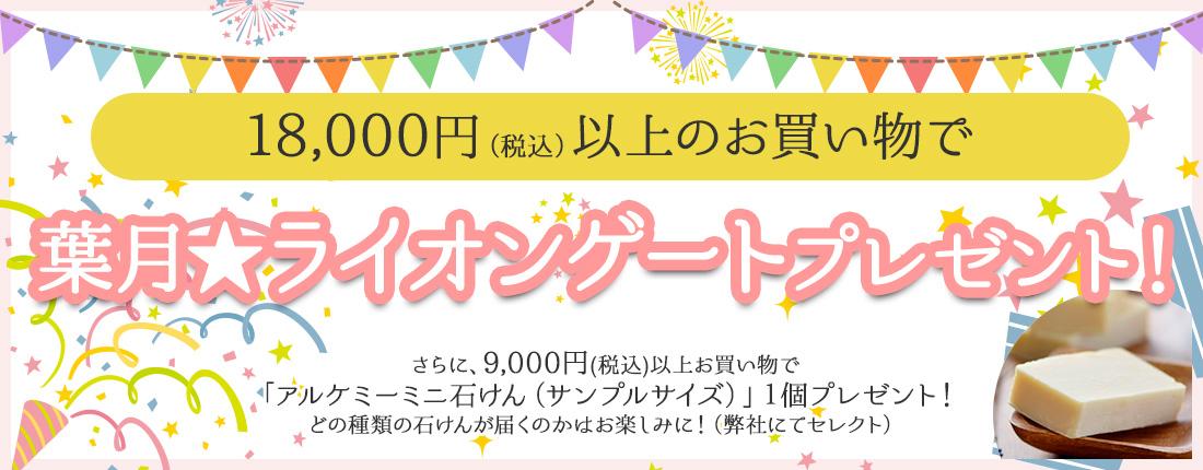 18000円以上のお買い物でプレゼント!